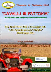 Cavalli in fattoria @ Azienda Agricola Il miglio | Martinengo | Lombardia | Italia
