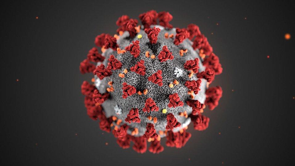 Emergenza Corona Virus: Sospensione attività sede operativa